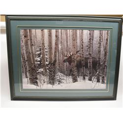 Framed Lyman Print