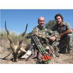 Argentina Blackbuck & Ram Hunt