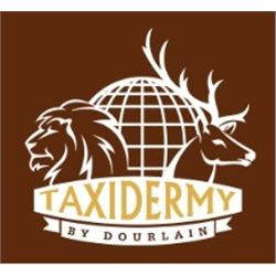 $500 Taxidermy Gift Certificate