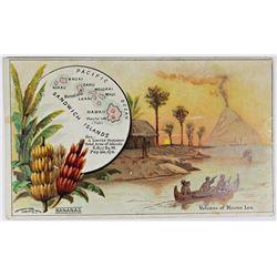 "SANDWICH ISLANDS ""PRE HAWAII"" COFFEE ADVERTISEMENT"