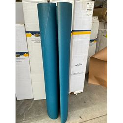 54 x 75 EKA1000F DRUM ROLL SANDPAPER BELT #60 GRIT T25