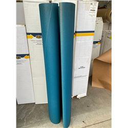54 x 75 PKFEO2 DRUM ROLL SANDPAPER BELT #80 GRIT T25