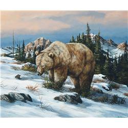 Trevor Swanson - Walking the Cold Ridge