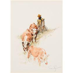 Tom Ryan - Hill Country