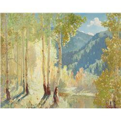 Fremont Ellis - Sunlight Through the Aspen Groves