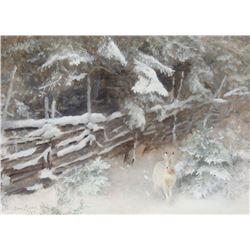 Bruno Liljefors - White Rabbit in Winter