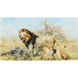 David Shepherd - Lion Pair