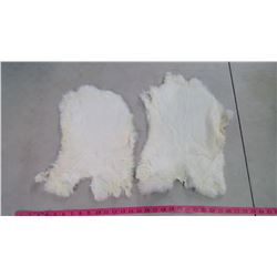 TWO RABBIT PELTS - WHITE