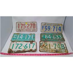 Assorted Vintage License Plates
