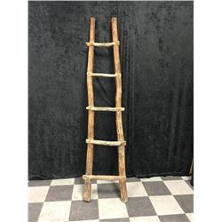 20TMO-179 WOODEN LADDER