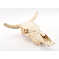 20TMO-164 COW SKULL