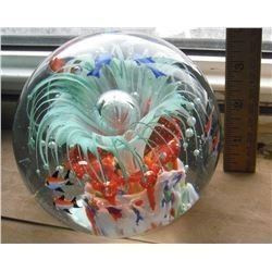 fish BIG amazing paperweight - GRANDE presse-papier extraordinaire images de poissons