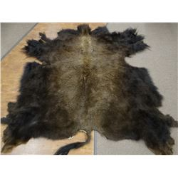 Tanned buffalo rug, 8' long including tail x 7' wide