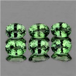 Natural Green Sapphire (6 Pcs) 4.5x3.5 MM - FL