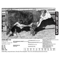 Sidwell Land & Cattle Co - 1919S