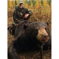 Owner of the Over the Counter/Statewide Big Bear Specialist