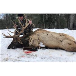Tony's Trophy Elk Hunts