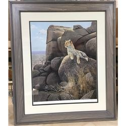 Framed Print:  LEOPARD by Clive Kay