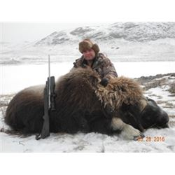 Greenland -- 1 Hunter for 3-Day Hunt for Muskox