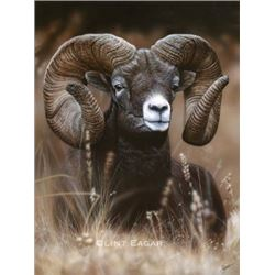 Canvas Print:  MOUNTAIN RAM by Clint Eagar