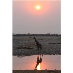 Wayne Wagner Photo Safari for Two with Option to Hunt