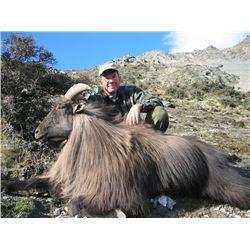 New Zealand Tahr Hunt