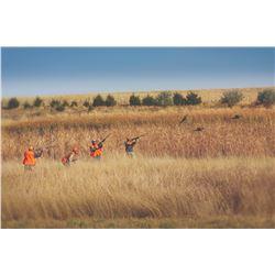 Cheyenne Ridge Pheasant Hunt, South Dakota