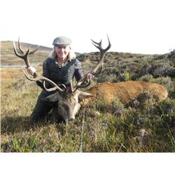 Three Day Scotland Red Stag Hunt