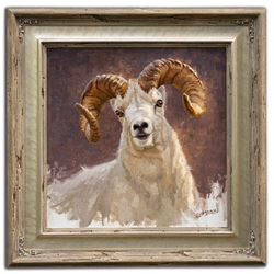 "Original Oil Painting ""Alaskan Dall Portrait"" By Chip Brock"