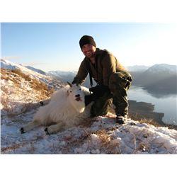 Uganik River, Kodiak Island Mountain Goat Special Permit