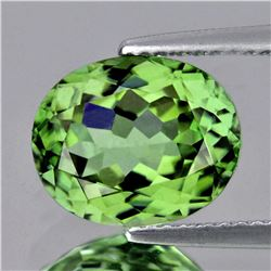 Natural AAA Green Apatite - 3.92 Ct - FLawless