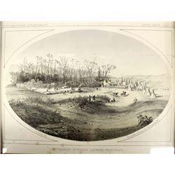 Antique Pacific Railroad Survey (USPRR) Lithograph