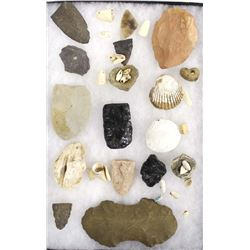 Prehistoric Stone Tools and Shell Beads