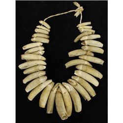 Northwest Coast Harbor Seal Teeth Necklace