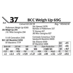 BCC Weigh Up 69G