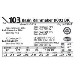 Basin Rainmaker 9002 BK