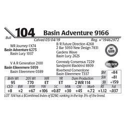 Basin Adventure 9166