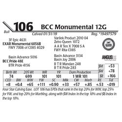 BCC Monumental 12G