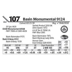Basin Monumental 9124