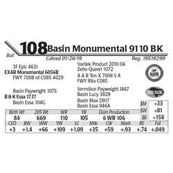 Basin Monumental 9110 BK