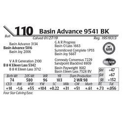 Basin Advance 9541 BK