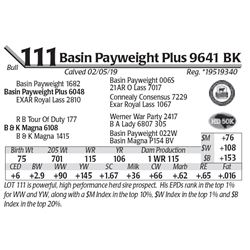 Basin Payweight Plus 9641 BK