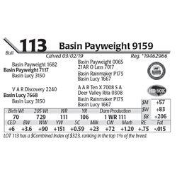 Basin Payweight 9159