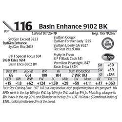 Basin Enhance 9102 BK