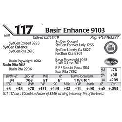 Basin Enhance 9103