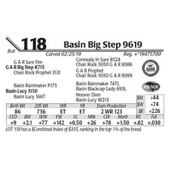 Basin Big Step 9619