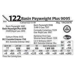 Basin Payweight Plus 9095