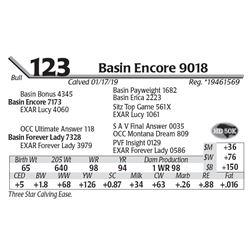 Basin Encore 9018