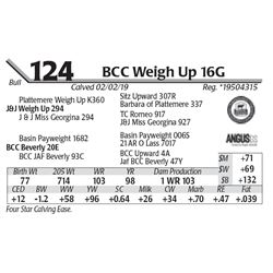 BCC Weigh Up 16G