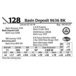 Basin Deposit 9636 BK